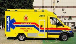 Ambulance use affects timely emergency treatment of acute ischaemic stroke